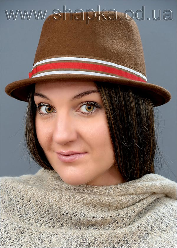 Женская фетровая шляпа 173-13